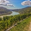 View on the Danube river from the hills surrounding the village of Spitz, Wachau