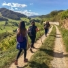Group of hikers on the panoramic Wachau World Heritage Trail