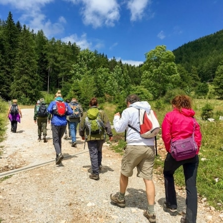 Wandergruppe auf dem Weg zur Bärenschützklamm in Mixnitz
