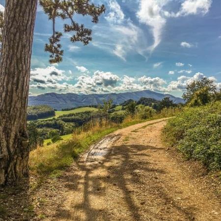 Hafnerberg hiking trail