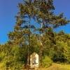 Hafnerberg little yellow chapel between two trees