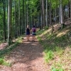 Viennese Alps two girls on forest trail