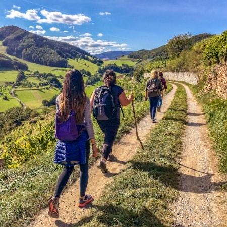 Group of female hikers enjoying the views on the Wachau World Heritage Trail